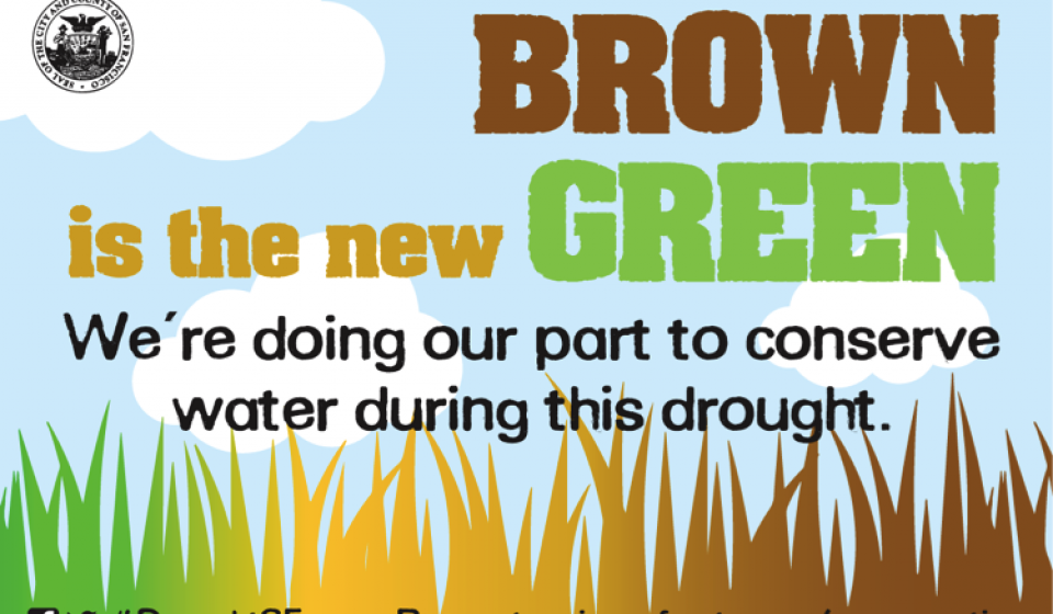 "Cartoon image depicting dry grass with the phrase ""Brown is the new green; we're doing our part during the drought."""
