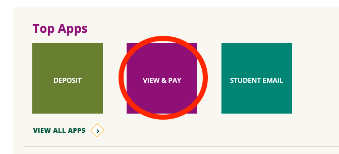 view and pay button
