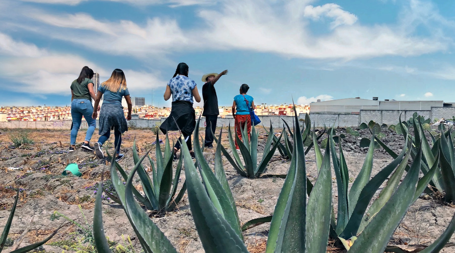 Group of students stands in an agave field overlooking Puebla's highrisers.