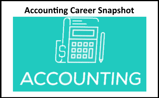 Accounting Snapshot picture
