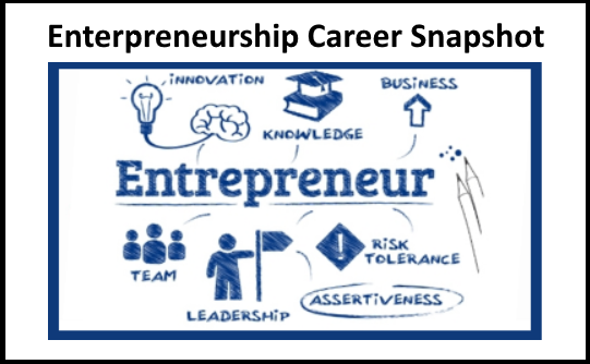Enterpreneurship Snapshots picture