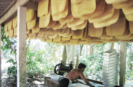Processing Raw Rubber