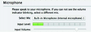 Zoom Microphone Test Window